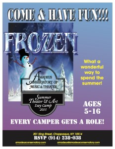 Amadues Frozen Flyer